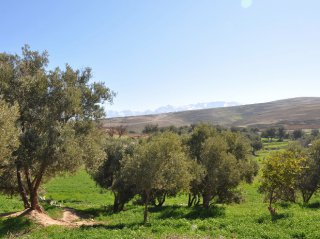 atlas around Marrakech - morocco - riad chamali