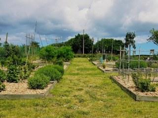 Le jardin des Ondes