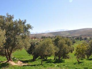 atlas - riad chamali - marrakech - maroc