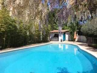 La grande piscine avec la belle glycine en floraison