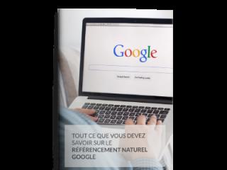 livre blanc référencement google SEO