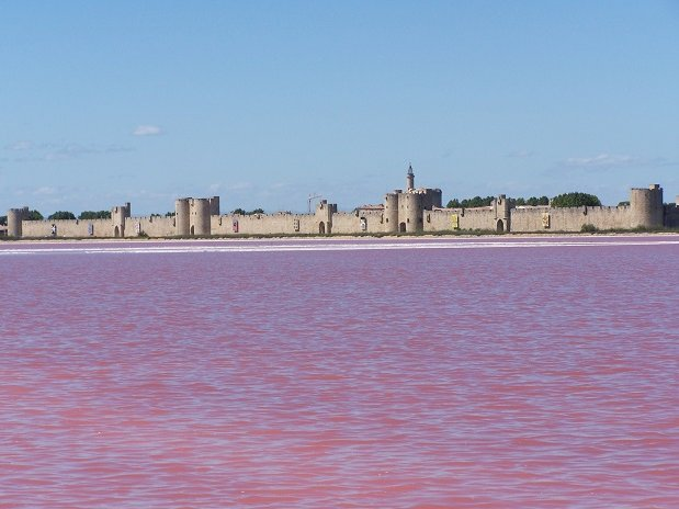 camargue-aigues mortes- fortifications-camping l'olivier