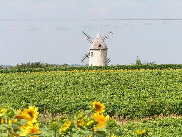 Charente Nature Holiday Brossac Etang Vallier