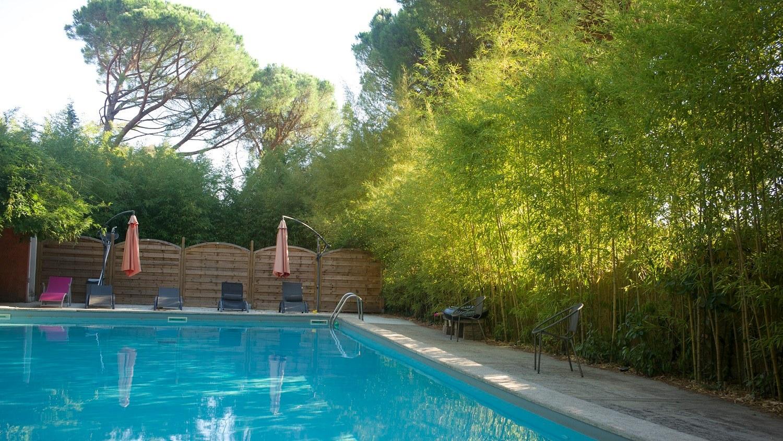 La grande piscine et ses pins