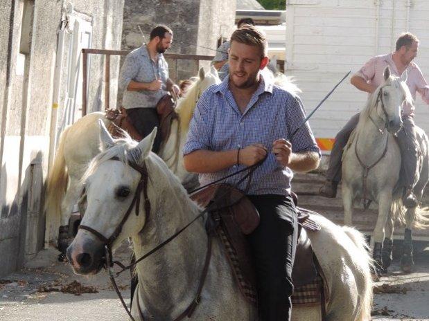 Camping l olivier - nimes - camargue - ballade equestre