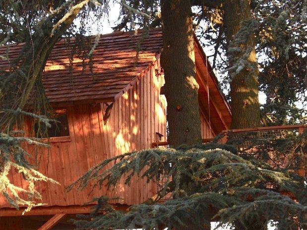 détail Cabane dans les arbres Loire