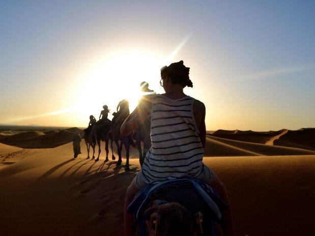 Oasis Desert Maroc