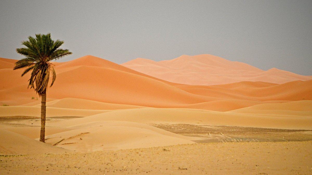 Dunes Hotel Kanz Erremal