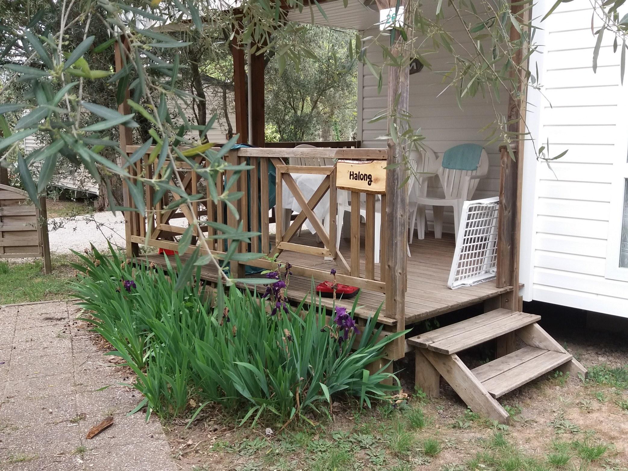 Camping l'olivier - Sommières - Nîmes