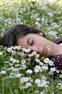 fleurs-de-bach-quebec-détente