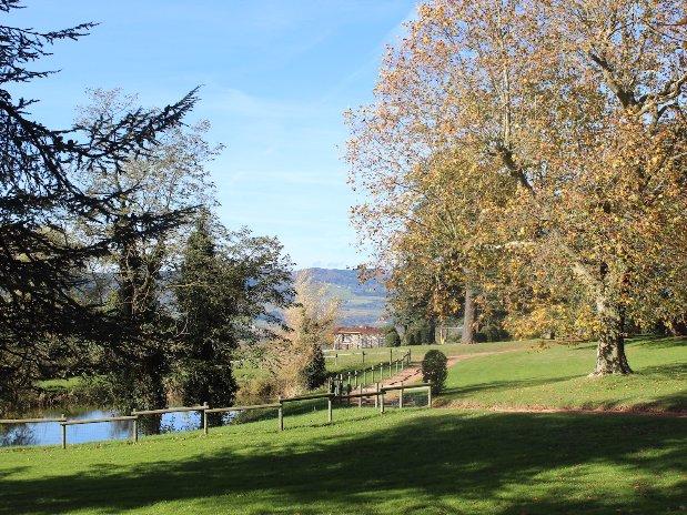 jardin domaine grans cèdres Loire