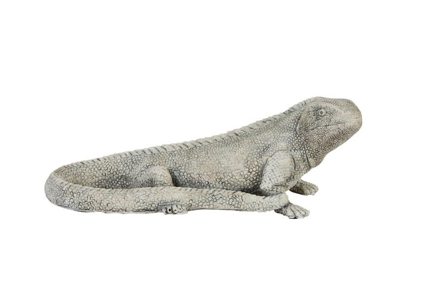 reptile gris PM