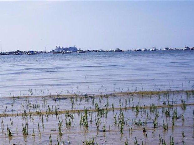 Baie de Salenelles