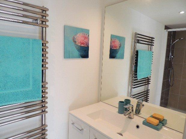 salle de bain gite martin pecheur