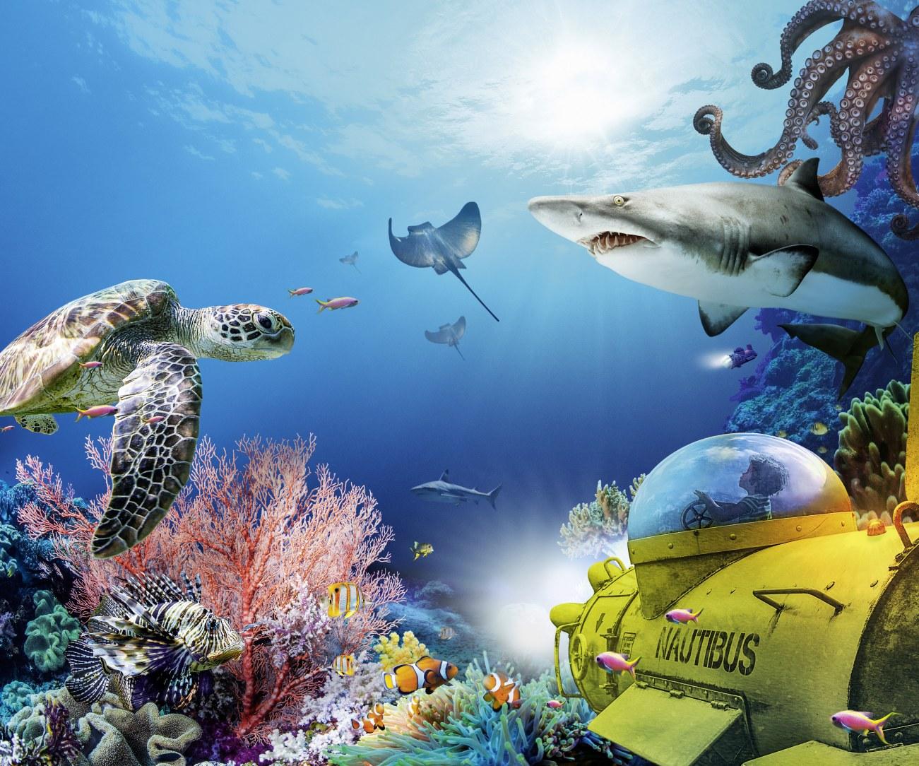Grand Aquarium Saint-Malo_visuel 2021