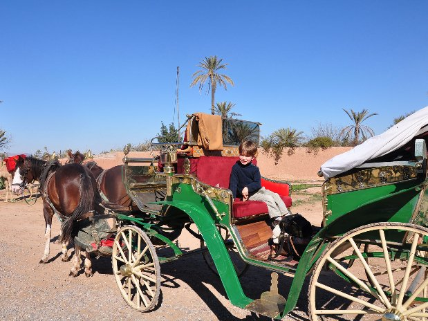 carriage ride - marrakech - morocco - city tours