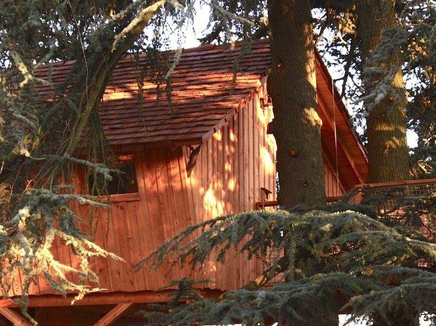 Cabanes sur les arbres Domaine grands cèdres Loire
