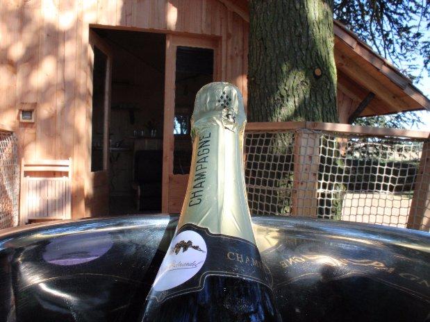 champagne cabane arbres domaine grands cèdres