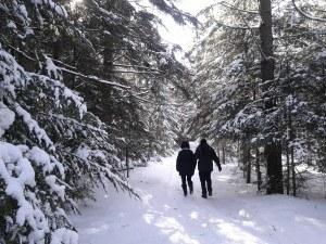 Pourvoirie-chaudiere-appalaches-chalet-à-louer-sentiers-hiver