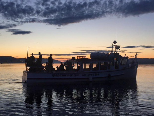 Cruising Gaspé