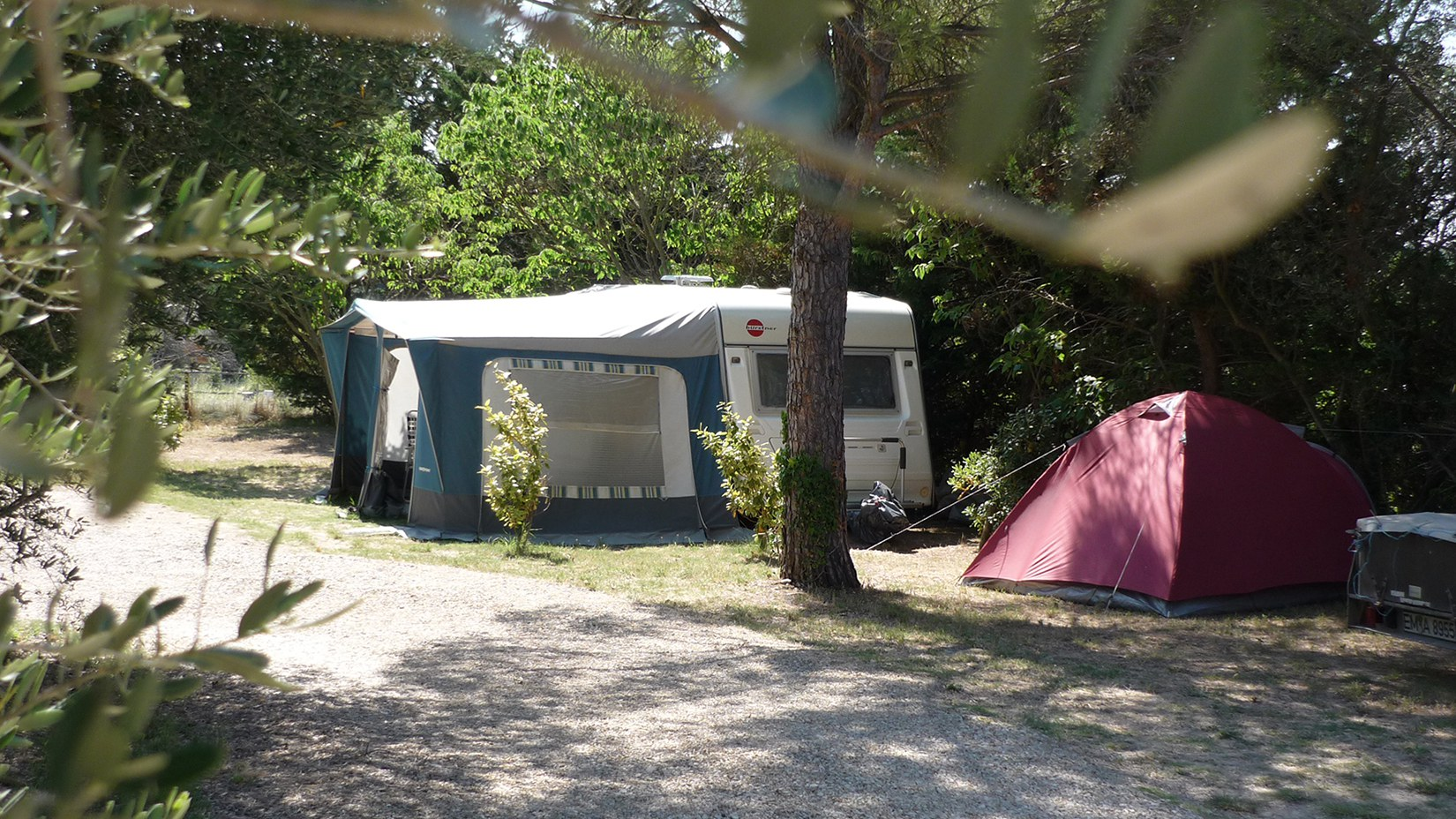 Camping l'Olivier