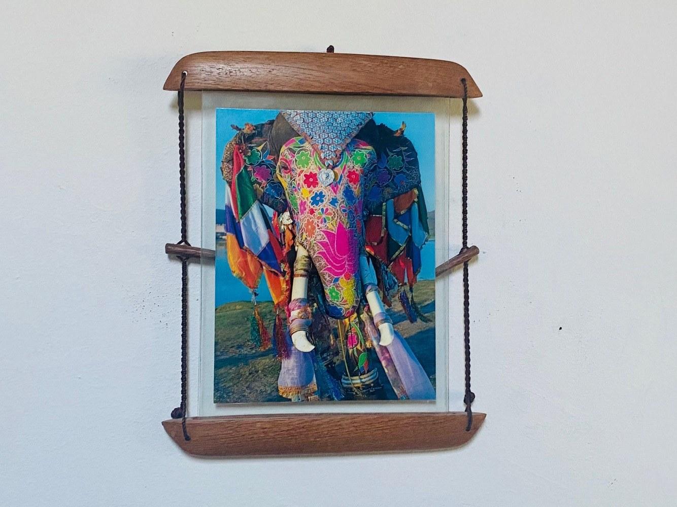 Elephant photo cadre