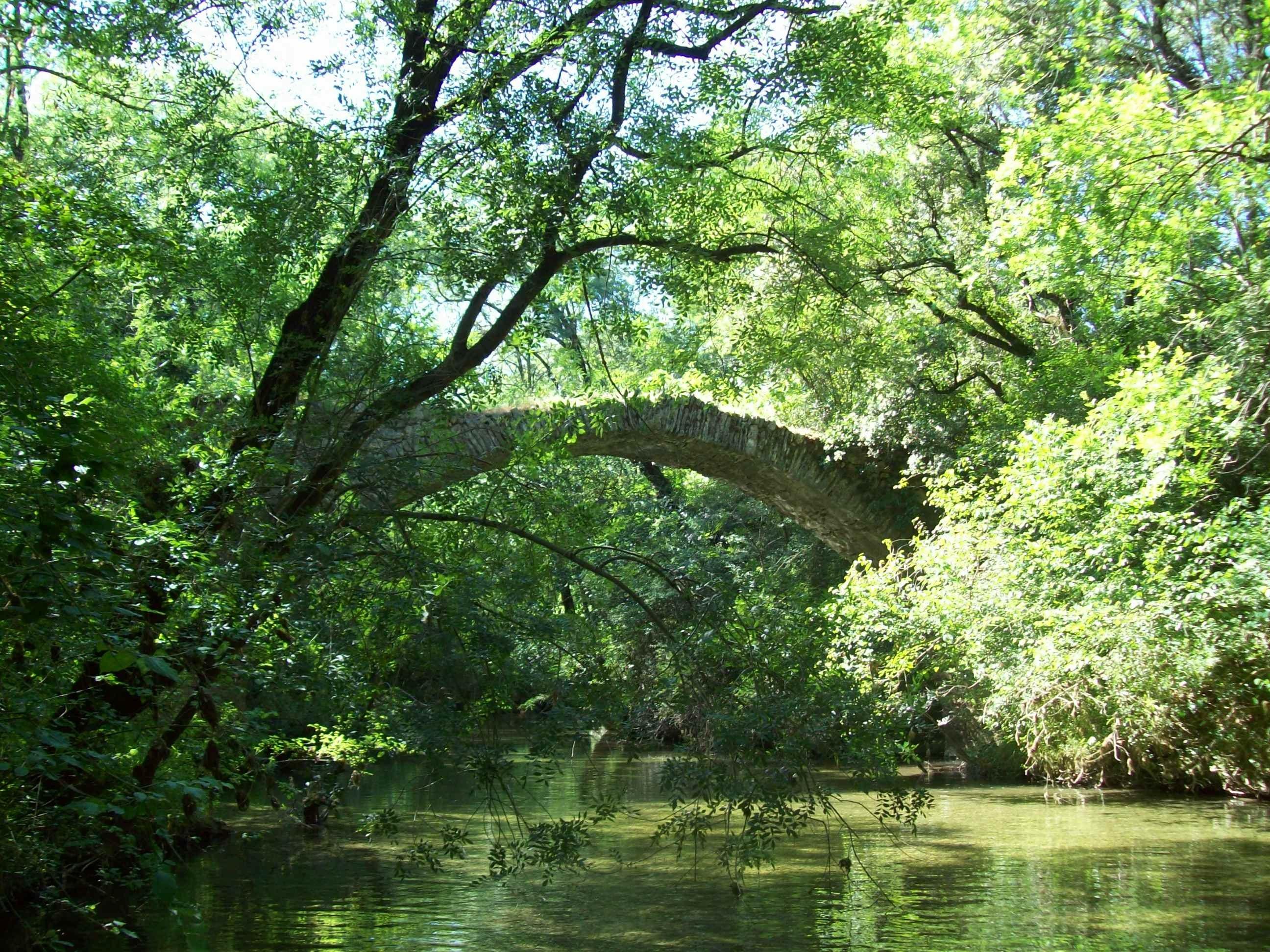 pont Buèges