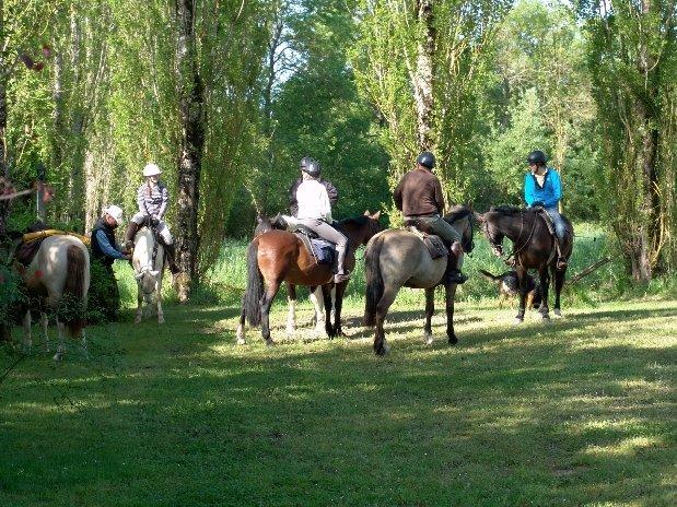 Equitation-chambres d'hôtes - maison d'hôtes de charme - perigord -dordogne - lot et garonne-villereal -monflanquin-randonnées