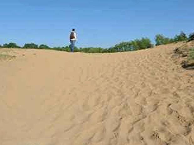 Dunes de sable les Charmes