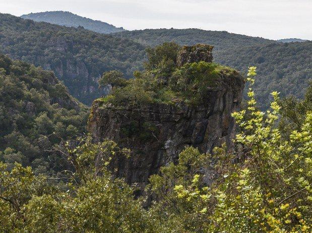 Canyonning Hérault