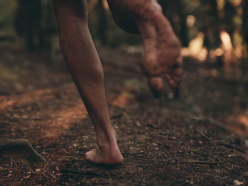 Le Mouvement Naturel, est-ce un sport ?
