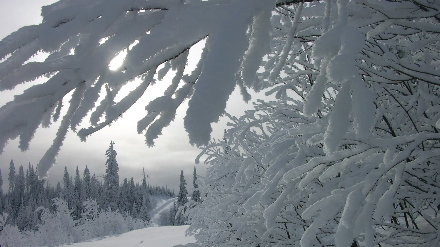 chalet-mont-valins-motoneige-hiver