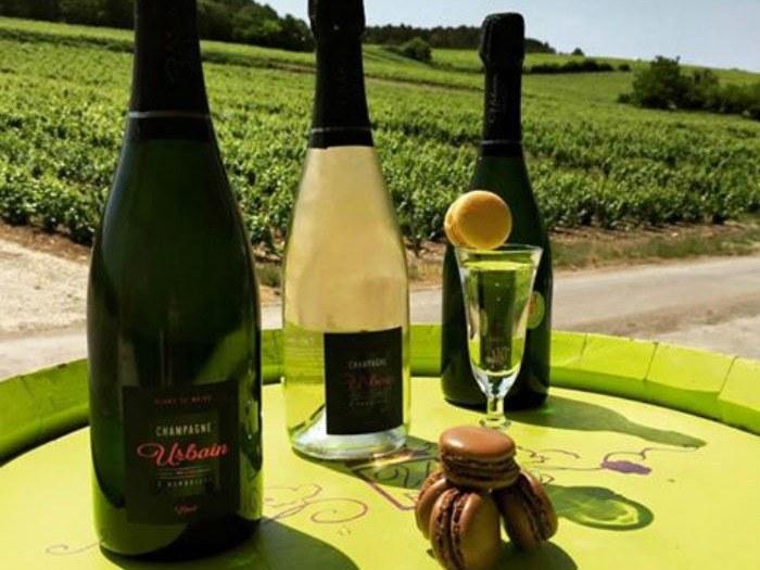 baroville-champagne-urbain-pere-fils-bouteille-macaron-herbe-verre