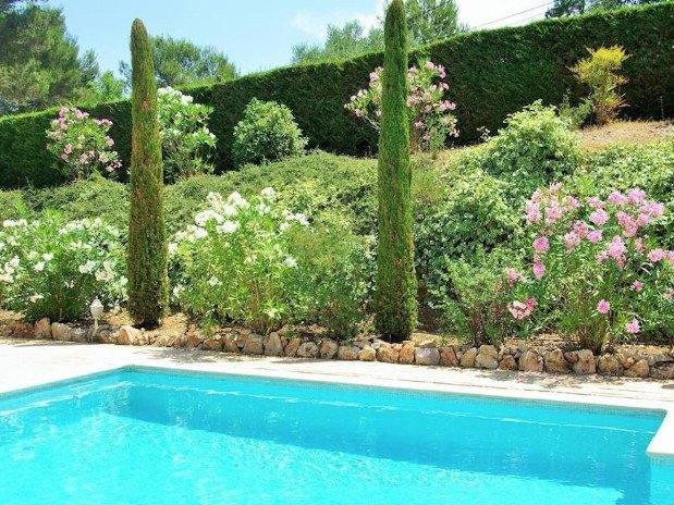 b&b-piscine-cannes-domaine-les-cigales-arbres