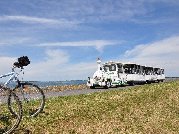 gite-lac-du-der-petit-train