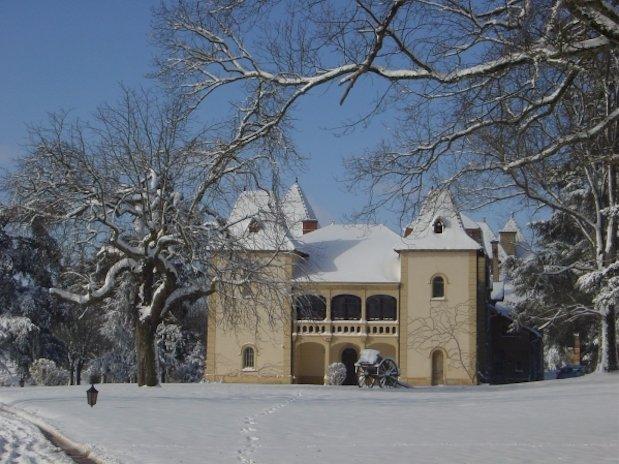 Hiver Chambres Hôtes Luxe domaine cèdres Loire