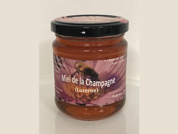 miel-luzerne-miel-artisanal-champagne