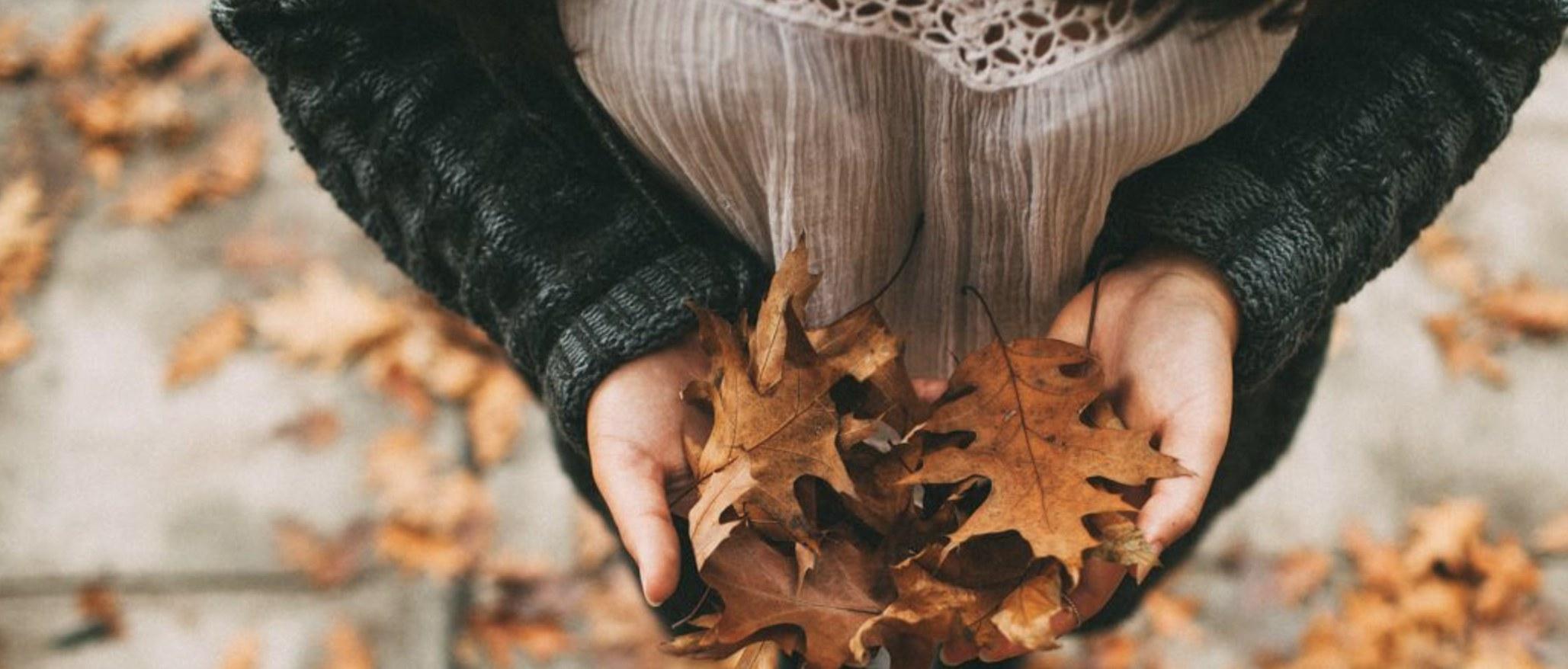 Trucs pour traverser l'automne