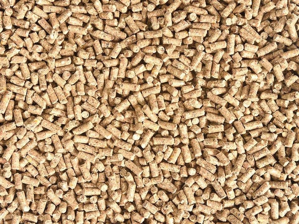 alimentation-poules-granules