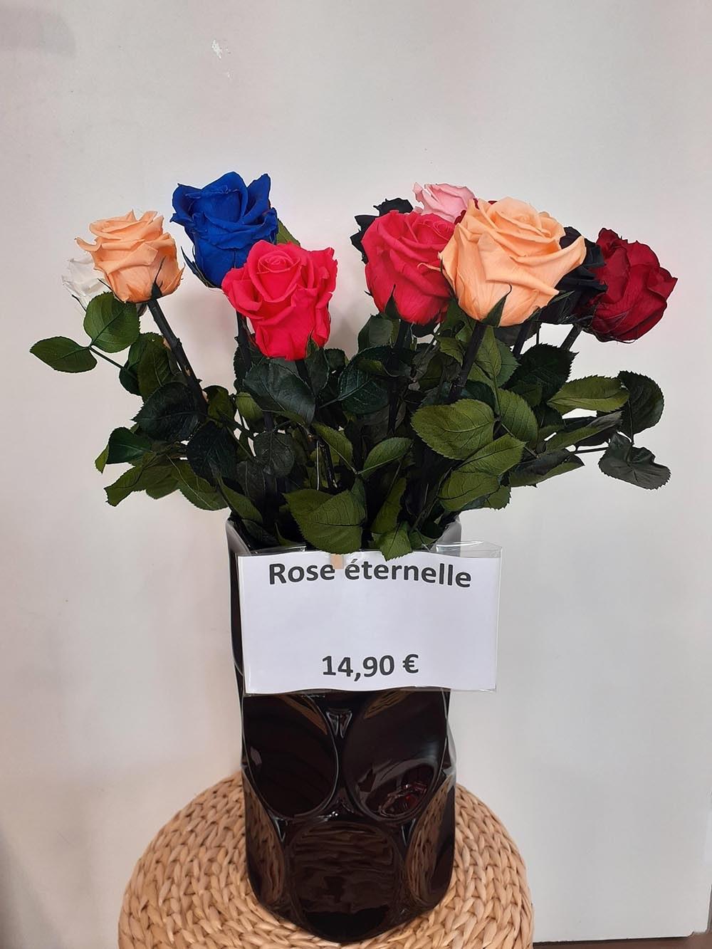 Rose eternelle (1)