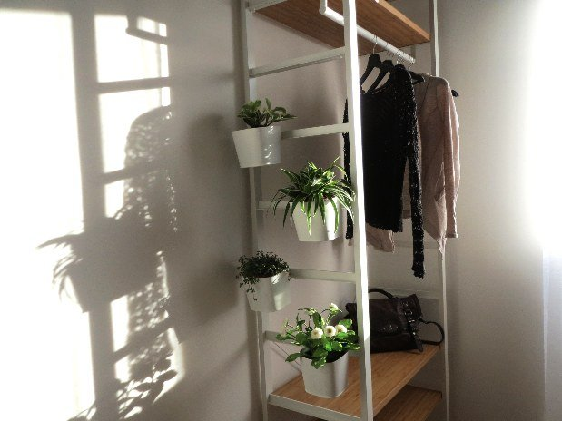 Issensac et plantes
