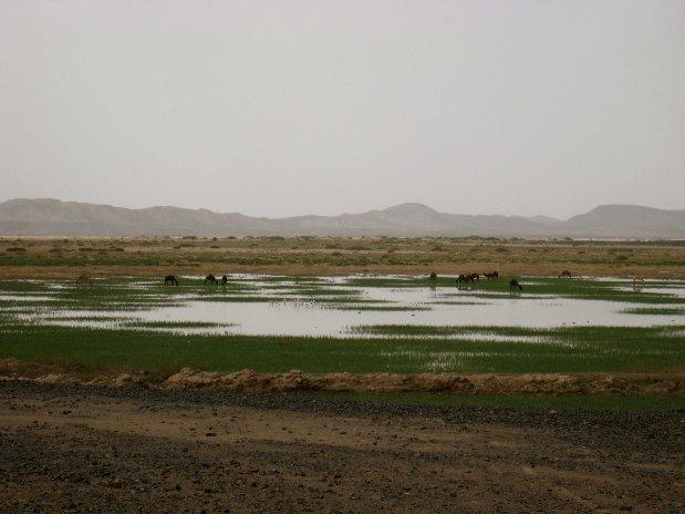 Mines  MfisHotel Kanz Erremal