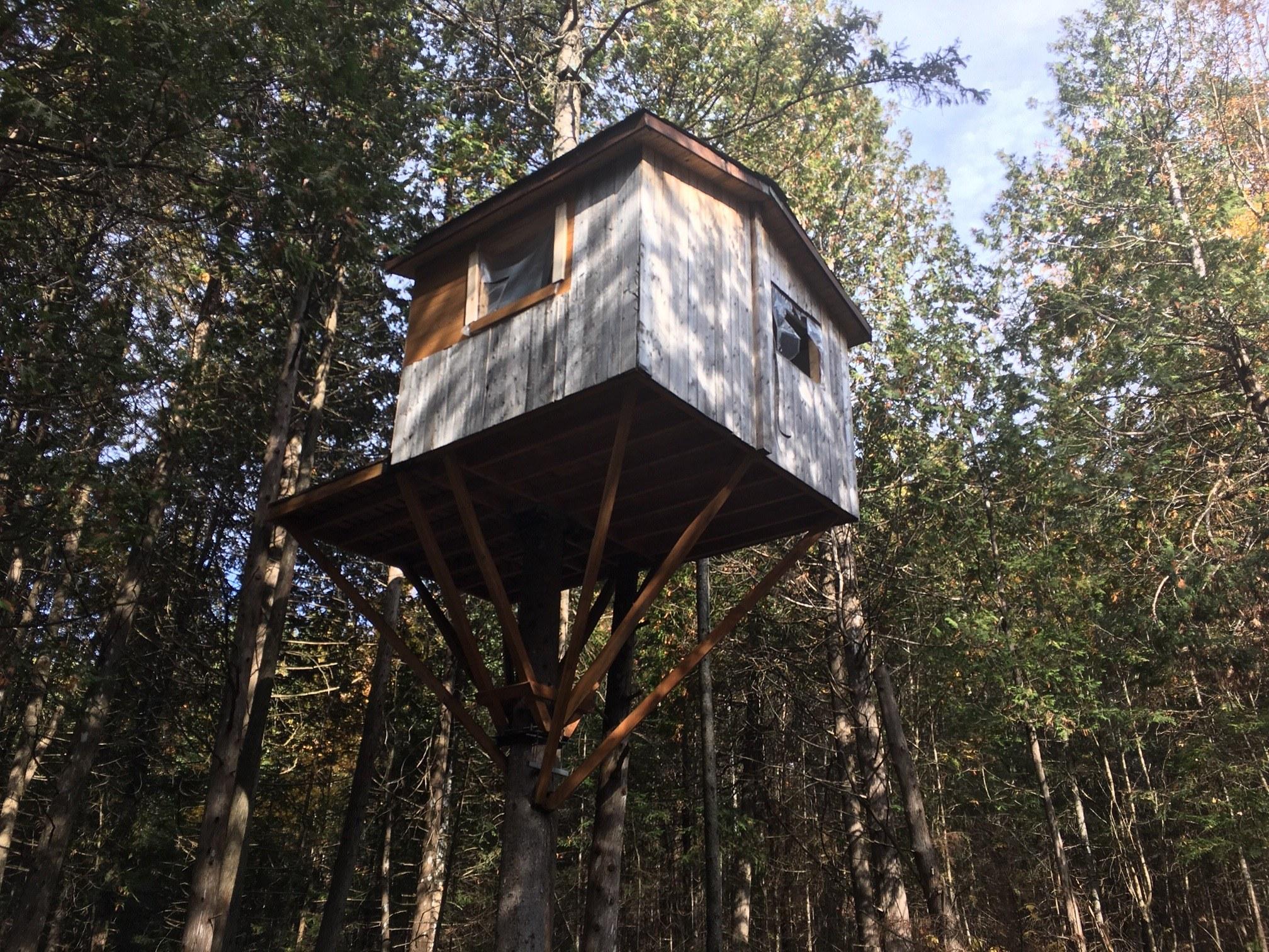 maison-dans-les-arbres-domaine-faunique