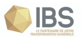 IBS developpement