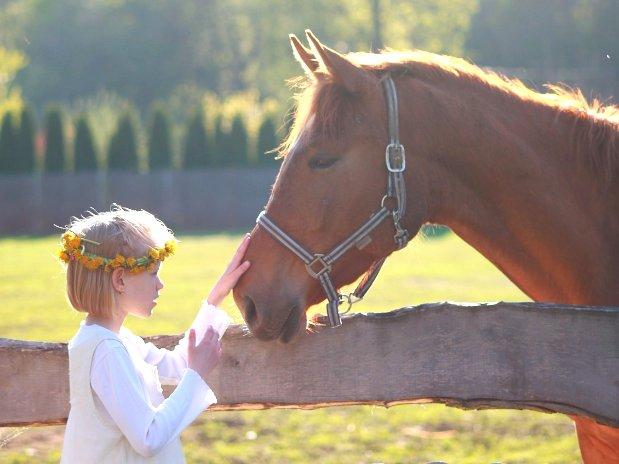 equitation-randonnées-cheval-chambres d'hôtes - maison d'hôtes de charme - perigord -dordogne - lot et garonne-villereal -monflanquin-randonnées