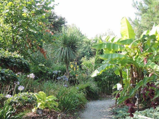villa-bettina-la-baule-ussim-vacances-tropicarium-bonsai