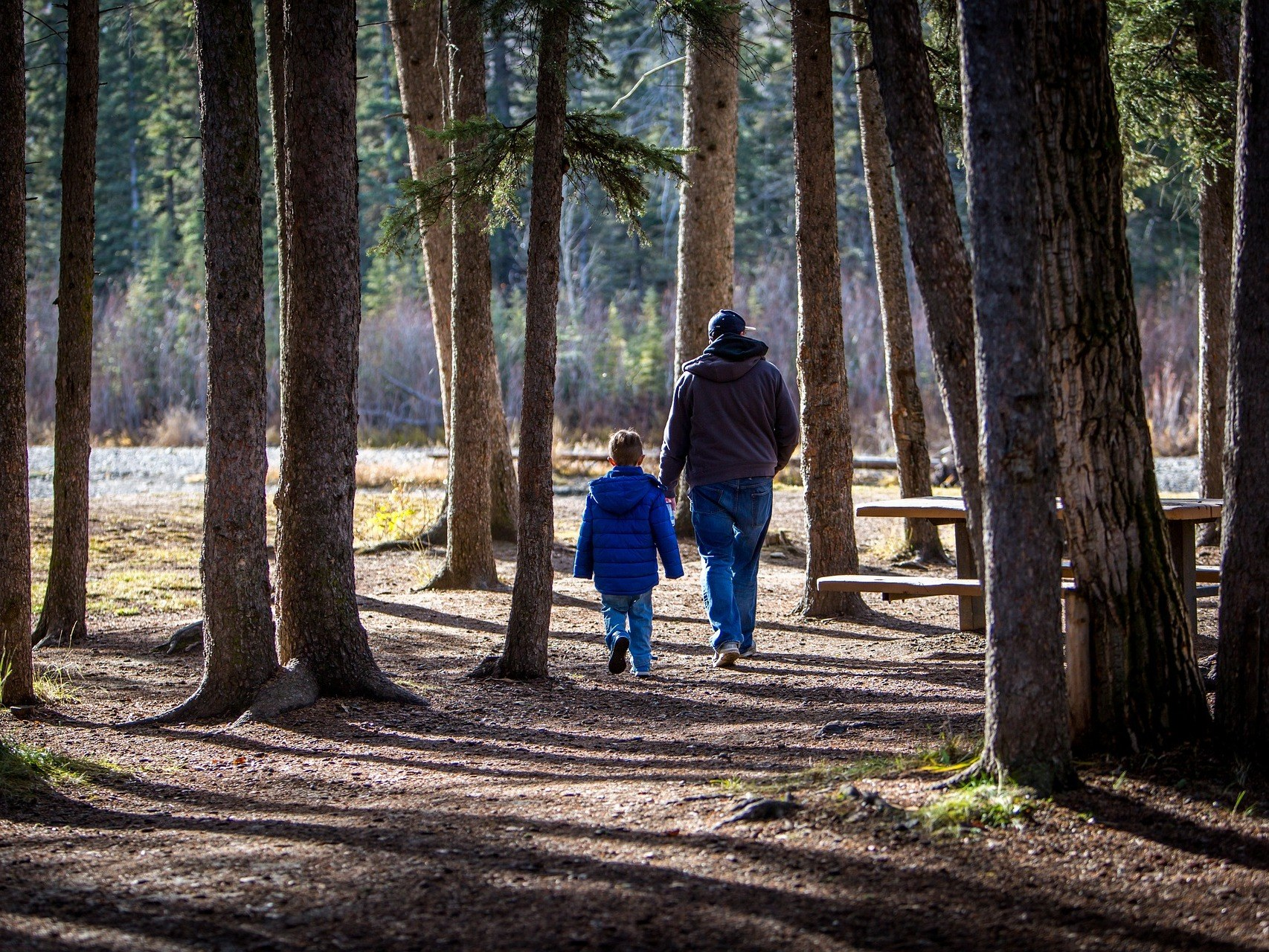 gite-hautvillers-pere-fils-enfant-arbre-nature