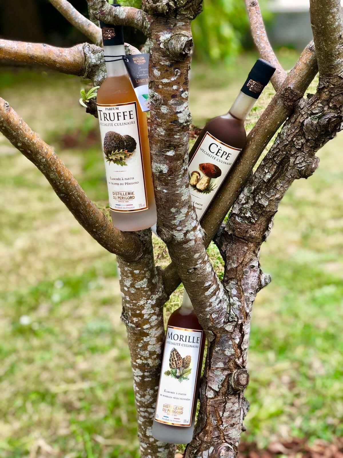 Porto Dix Vins – Cave à vins et spiritueux à Esperce