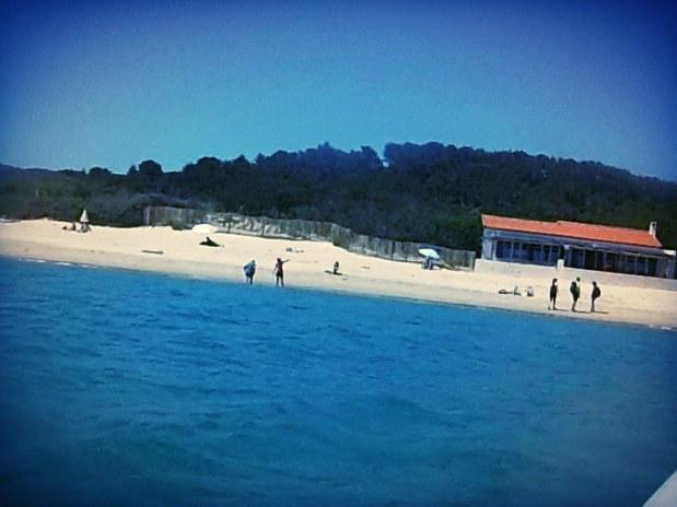plage de St Tropez-proche de La Potinière