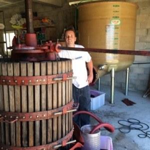 domaine-viticole-dans-le-languedoc-roussillon-3